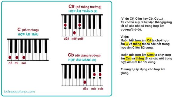 Kiến thức cơ bản để bắt đầu học đàn PIANO