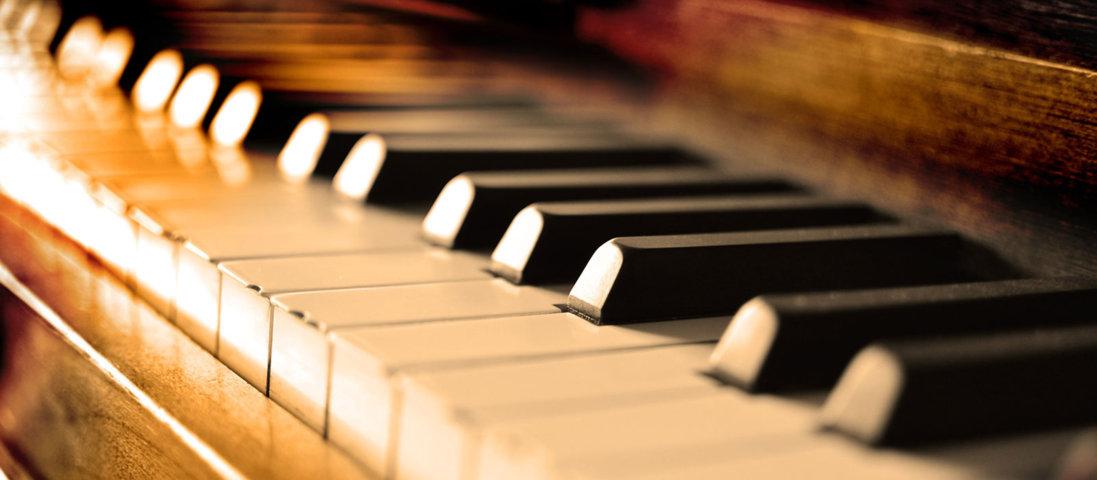 Cách học Organ cơ bản Hiệu quả nhất Nhanh nhất
