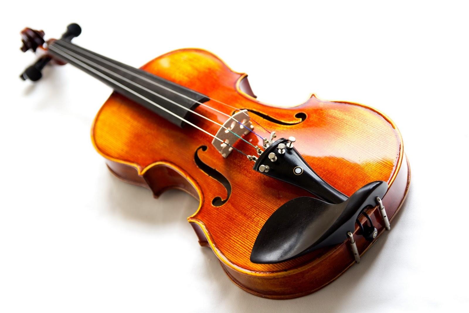 Khóa học violin cho người mới học