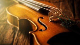 Khóa học Violin giá rẻ