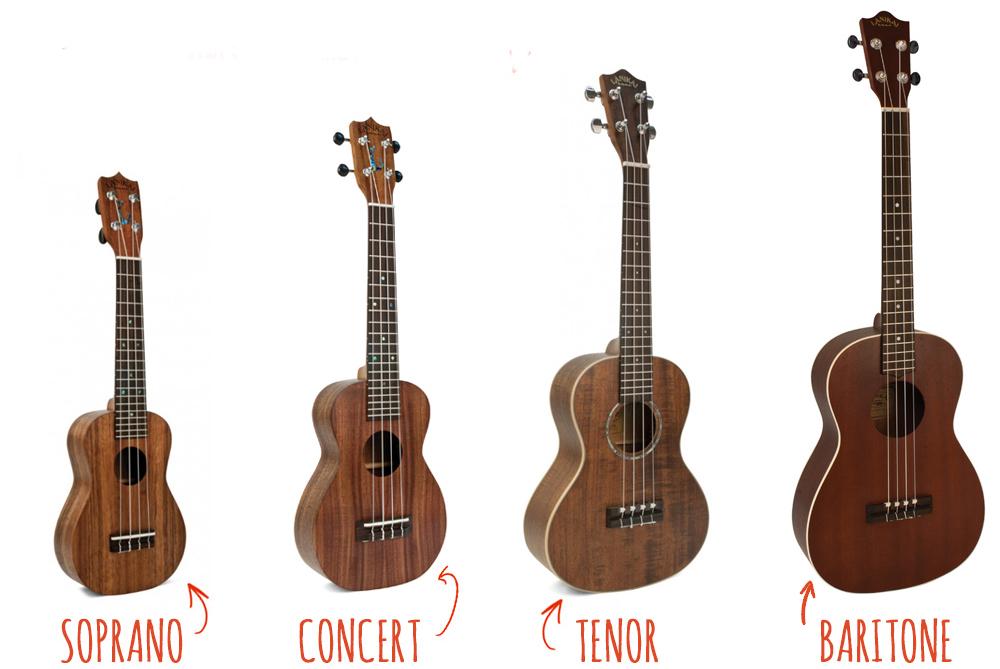 Phân biệt Ukulele Soprano, Ukulele Concert, Ukulele Tenor, Ukulele Baritone