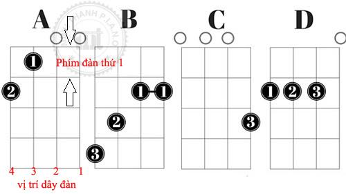 Hướng dẫn học đàn ukulele cơ bản