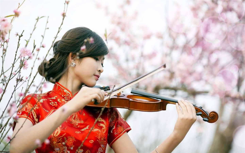 Học đàn Violin có đắt không và bao nhiêu tiền?