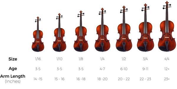 Hướng dẫn cách phân biệt kích thước của đàn Violin