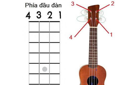 cách lên dây đàn ukulele