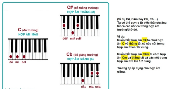 Tổng hợp các hợp âm cơ bản, đủ dùng trên Piano cho bất cứ ai
