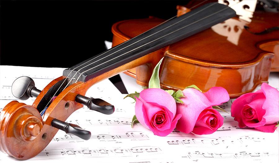 Violin – Âm thanh minh chứng cho tình yêu