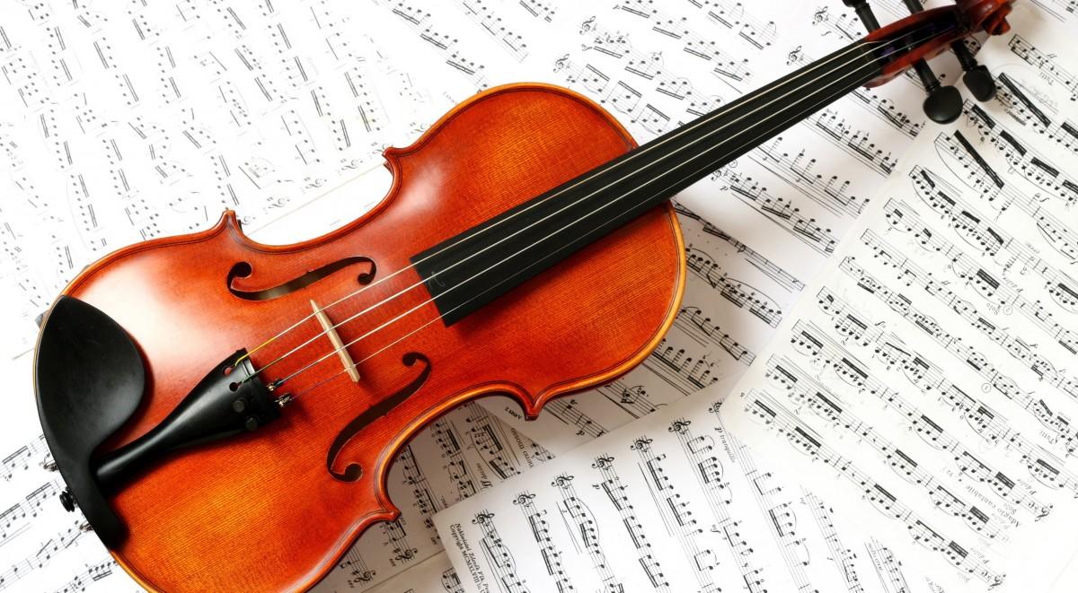 những thông tin hữu ích về những cây đàn có mức giá phổ biến trên thị trường để bạn có thể tự tìm được câu trả lời cho câu hỏi:Một cây đàn violin giá bao nhiêu? 2