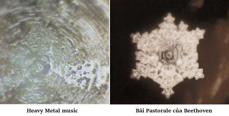 Hình dạng của nước thay đổi khi nghe các bản nhạc khác nhau